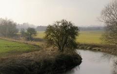 River Welland Rutland (Adam Swaine) Tags: uk winter england english canon landscape countryside seasons britain rivers british rutland welland 2015 swaine riverwelland