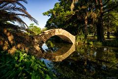 Morning Reflection (michael.mu) Tags: leica morning bridge louisiana neworleans polarizer citypark 21mm m240 colorefexpro superelmarm21mmf34asph