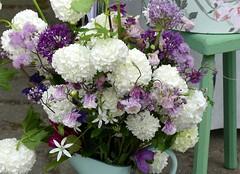 Happy Birthday (BrigitteE1) Tags: flowers fleur colorful flickr pretty colours blumen happybirthday bloom