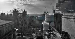 restless city (Aditya Indrajaya) Tags: uk travel winter vacation england london tower blackwhite europe noiretblanc britain londres blancoynero