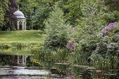 Romantic (Pieter Musterd) Tags: park holland canon nederland canon5d lente zeist vijver koepel driebergen rododendron gelelis driebergenzeist musterd pietermusterd 5dmarkii