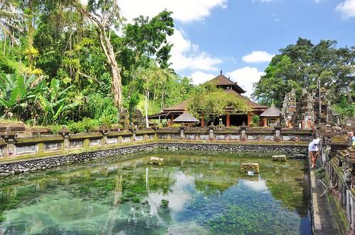 bali nord - indonesie 52