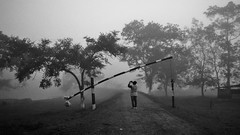 Into the forest (Rupa Razi) Tags: mist forest kaziranga