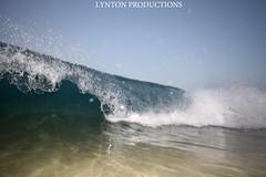 IMG_3798 copy (Aaron Lynton) Tags: beach canon big spl beah makena shorebreak lyntonproductions