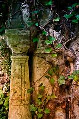 Jena - Historischer Johannisfriedhof  (2) (berndtolksdorf1) Tags: friedhof cemetery deutschland thringen outdoor jena grabstein stille historisch ruhesttte johannisfreidhof