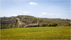 Rural Thuringia (:: Blende 22 ::) Tags: flower germany landscape deutschland spring hessen blossom landschaft springtime frhling hesse blten kolonnenweg innergermanborder canoneos5dmarkii ef2470f28liiusm