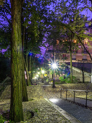 Paris Steps