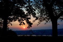 Sunrise Framed (Lojones13) Tags: trees silhouette sunrise serene