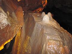 Travertine dripstone (Shenandoah Caverns, Quicksburg, Virginia, USA) 17 (James St. John) Tags: shenandoah caverns cave caves quicksburg county virginia conococheague formation upper cambrian carbonate carbonates travertine dripstone stalagmite stalagmites