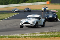 Masters Three Hours AC Cobra (motorsportimagesbyghp) Tags: classiccar motorracing sportscar motorsport autosport brandshatch accobra mastershistoricfestival masterthreehour