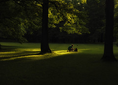 Selfienation (Varvara_R) Tags: park light sunset summer people green love grass sunshine evening couple selfie