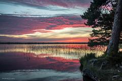 Tanavjarv (Incredible Imagination) Tags: sky clouds estonia nikon d600 tree outdoor water lake tnavjrv sunset summer hiking blue estland viro inland