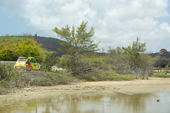 Flamingo area at Williwood (timohermann) Tags: duck citroen flamingos curacao 2cv ente curaao jankok sintwillibrordus ducksunited williwood