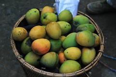 Mango season in Mizoram (azara ralte) Tags: india fruits am mango em thei mizo aizawl mizoram northeastindia bamboobasket tanhril theihai