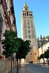 2016 04 25 014 Seville (Mark Baker, photoboxgallery.com/markbaker) Tags: city urban tower photo spring sevilla spain europe european day baker cathedral outdoor mark union catedral eu seville andalucia photograph april giralda 2016 picsmark