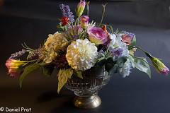 Florero (dapray) Tags: flor stillife jarron colorsinourworld geostate geo:country=florero