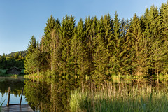 Am Geroldsee zum Sonnenaufgang-5325 (Holger Losekann) Tags: geroldsee gerold see lake sonnenaufgang sunrise bume trees wasser water landschaft landscape bavaria bayern deutschland germany krn de