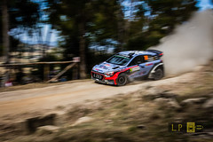 Thierry Neuville - Hyundai  i20 WRC (Luca eskimo) Tags: sardegna cars car sport race speed italia sardinia rally racing dirty dirt wrc dust hyundai panning motorsport neuville hyundaii20 autolavaggiobatman