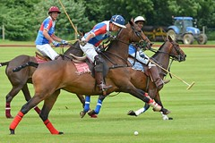 a MH1_2498 (bajandiver) Tags: rutland polo equestrian horses bajandiver