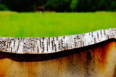 Looking Over The Fence (macplatti) Tags: wood red verde green fence austria landwirtschaft meadow wiese farmer grn aut vorarlberg koblach