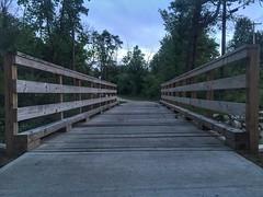 Trail Bridge (ikilledkenny1029) Tags: wood bridge nature vanishingpoint wooden footbridge path walkway converginglines beautyinnature