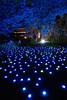 Tanabata 'Star Festival' Illuminations at Shukkei-en Garden (GetHiroshima) Tags: summer illuminations hiroshima tanabata 広島 gethiroshima 七夕 イルミネーション 縮景園 shukkeiengarden