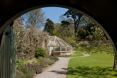 The greenhouse at Greenway (dorrisd) Tags: county uk trees england london mystery garden de book spring bomen travels gate shadows estate path lawn jardin books devon crime greenhouse rhododendron gb magnolia writer tuin mousetrap serra nationaltrust lente garten engeland listed giardino poort greenway gewchshaus kas agathachristie reizen effet graafschap serre voorjaar schaduwen doorkijkje voetpad landgoed galmpton gradeii canon24105mm flickraward canoneos5od mienekeandewegvanrijn