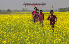 Children (Shajal1) Tags: life old pink flowers blue trees portrait sky black flower tree green nature beautiful beauty childhood yellow closeup kids canon wonderful dark children lens landscape photography eos golden evening amazing nice colorful dof village shot samsung 300mm 55mm disk dell intel excellent hassan lovely core childish 75mm yellowmustard supershot i7 70mm300mm canon60d 18mm55mm shajal canoneos60d blinkagain yellowmustardfield gettyimagesbangladeshq12012 qamrul qamrulhassanshajal