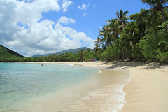 BVI 2013 (Sweetlassie) Tags: beach palmtrees caribbean tortola smugglerscove bvi2013
