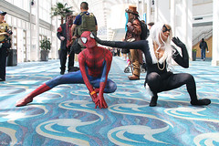 Spiderman and Blackcat