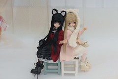 9th Lien 20130607 # 5 / 5 (loatras) Tags: cat neko lien azone pureneemo excute