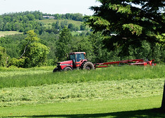 cuttin' hay (1) (Ange 29) Tags: trees tractor canada king olympus cutting hay township e30 zd 35100mm