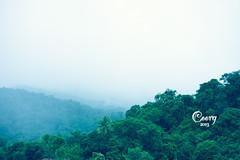 IMG_6172 (cishore™) Tags: india mountain nature photographer deer hyderabad karnataka cishore kishore coorg wwwkishorencom kishorenagarigari kishorephotography wwwcishorecom