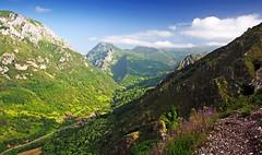 Mirador de Proacina (DeLaTorre 73) Tags: trees espaa naturaleza mountain mountains verde green nature grass clouds landscape spain arboles valle asturias paisaje valley nubes monte montaa picos montaas hierba principadodeasturias nikond90