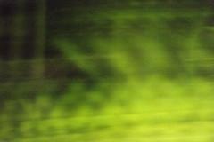 20130719-_DSC7842 (Fomal Haut) Tags: walking nikon 80400mm d4 歩く 散歩写真 sanpocamera