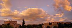 Mornings and evenings from my window (Daisuke Ido) Tags: trees sunset sky panorama alberi clouds tramonto nuvole cielo bologna