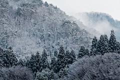 _MG_9908 (Dan Bachmann) Tags: travel winter 20d japan canon landscape eos asia december place natural fukui 2008 miyama 200mm naturallandscape miyamacho