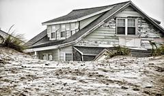 Cottage Behind Dunes (PAJ880) Tags: beach dunes cottage nh hampton