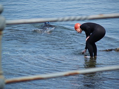Time for a refreshing dip (divnic) Tags: uk sea lady swimming women bangor northernireland ni wetsuit northchannel sealoch northdown seaswimming
