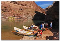 DSC_0901a (tellytomtelly) Tags: arizona grandcanyon rich coloradoriver bronco dory oars grandcanyonnationalpark billbruchak