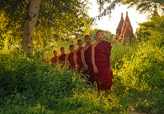 The Forest Path.  Monks in Bagan. (AndersonImages) Tags: forest temple burma traditional culture buddhism monks myanmar bagan michaelanderson