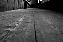 Werburgh Street Church 112 (Dave Road Records) Tags: ireland blackandwhite dublin church monochrome woodenfloor churchinterior churchfloor irishchurch dublinchurch werburghstreet