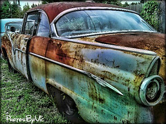 Driver's Side (Photos By Vic) Tags: old ford 1955 car rust automobile neglected rusty northcarolina vehicle 55 fairlane