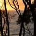 Garden Bay sunrise