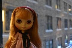 Sadie at the Hotel - New York