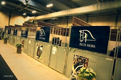 Blue Hors Stable at Stallion Show 2014 in Herning (vesterskov) Tags: show blue horse me st herning top first zee riding don choice rockefeller zack stable stallion hotline hest farrell romanov hors 2014 mch veneziano hingstekåring kåring erlando schufro vesterskov hingste olymbrio zatchmo
