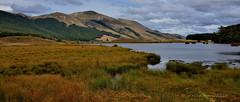 Mavora Lakes, Southland, NZ (flyingkiwigirl) Tags: new plants lake mountains reflections lakes zealand alpine doc southland swingbridge mavora