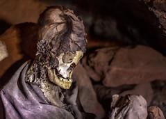 Momias de Coquesa (ahenaol) Tags: bolivia latinoamerica salar sudamerica uyuni momias suramerica tunupa coquesa