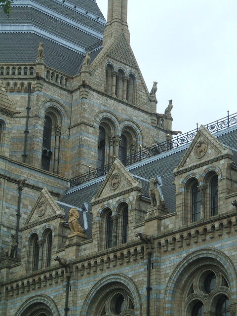 Natural History Museum 6