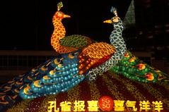 DSC09624 (oliveplum) Tags: singapore sony peacock chinesenewyear celebrations marinabay lightings leica60f28macro